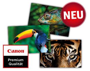 HD Premium Fotoabzüge